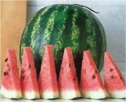 Fruits Watermelons