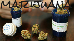 Medical Marijuana and Nutritional Balancing